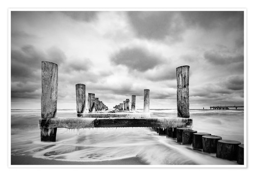 Póster Groynes on the Baltic Sea coast in Zingst, Germany