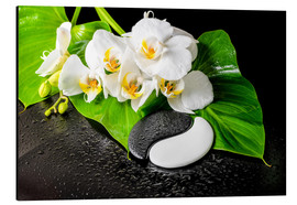 Aluminio-Dibond  White orchids and Yin-Yang stones