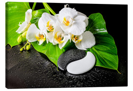 Lienzo  White orchids and Yin-Yang stones
