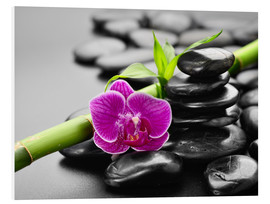 Forex  Basalt stones, bamboo and orchid