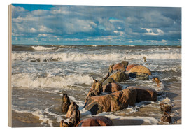 Cuadro de madera  Baltic Sea coast on a stormy day - Rico Ködder