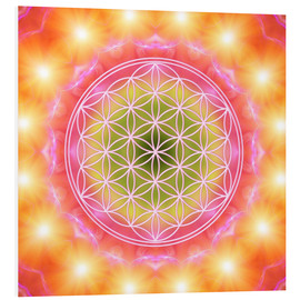 Forex  Flower of Life - Heart Energy - Dolphins DreamDesign