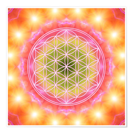 Póster  Flower of Life - Heart Energy - Dolphins DreamDesign