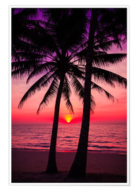 Póster  Palm trees and tropical sunset