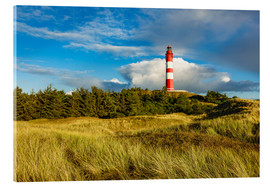 Cuadro de metacrilato  Lighthouse on the North Sea island Amrum - Rico Ködder