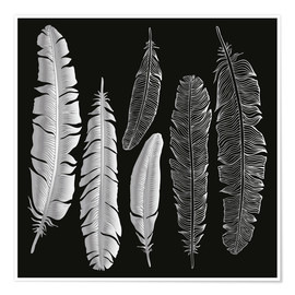 Póster  Feathers in silver