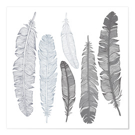 Póster  Feathers on white