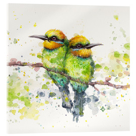Cuadro de metacrilato  Family (Rainbow Bee Eaters) - Sillier Than Sally