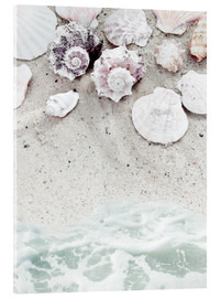 Cuadro de metacrilato  Sea Beach with Shells