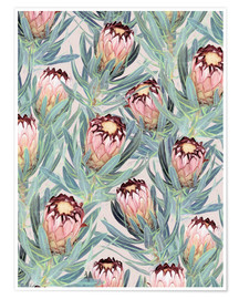 Póster  Pale Painted Protea Neriifolia - Micklyn Le Feuvre