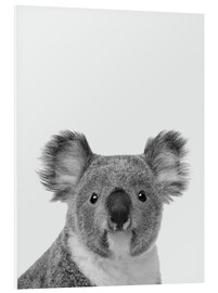 Cuadro de PVC  Adorable koala en blanco y negro - Finlay and Noa