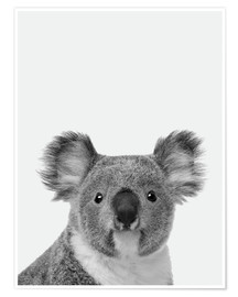 Póster  Adorable koala en blanco y negro - Finlay and Noa