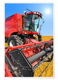 Póster  Red Combine