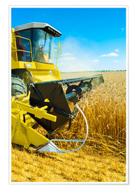 Póster  Combine harvester at work