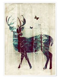 Póster  Deer in the Wild - Sybille Sterk