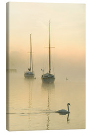 Lienzo  A misty morning over Lake Windermere, UK - Ashley Cooper