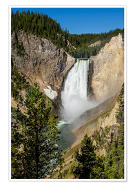 Póster Lower Falls, Yellowstone National Park, UNESCO World Heritage Site, Wyoming, United States of Americ