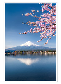 Póster Mount Fuji and Lake Kawaguchiko in Japan during the cherry blossom season