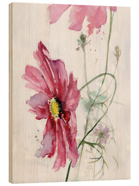 Madera  Cosmos flower watercolor - Verbrugge Watercolor