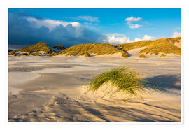 Póster  Dunes on the island of Amrum, North Sea
