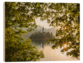 Cuadro de madera  Bled in the morning, Slovenia - Mike Clegg Photography