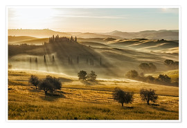 Póster Dawn in Tuscany, Italy