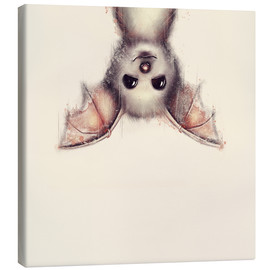 Lienzo  Hang in there, bat - Romina Lutz