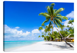 Lienzo  Palm beach in the South Pacific with white sand and blue sea - Jan Christopher Becke