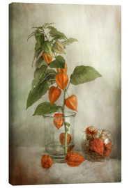 Lienzo  Still life with Physalis - Mandy Disher