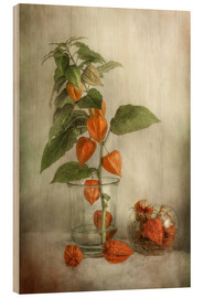 Cuadro de madera  Still life with Physalis - Mandy Disher
