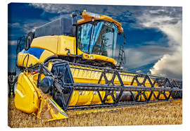 Lienzo  Harvester in the cornfield - Peter Roder