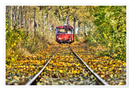 Póster  Train drives away from the photographer - Harald Schön