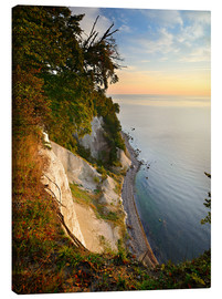 Lienzo  Chalk cliffs in the morning light - Andreas Vitting