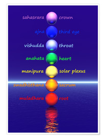 Póster Chakras with water