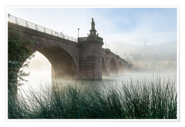 Póster  Neckar and Old Bridge in Heidelberg in autumn - Jan Christopher Becke