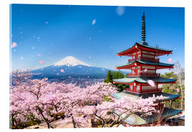 Cuadro de metacrilato  Chureito Pagoda and Mount Fuji in spring, Fujiyoshida, Japan - Jan Christopher Becke