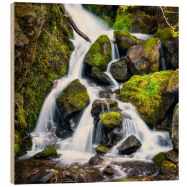 Cuadro de madera  Waterfall in the forest near Triberg, Black Forest - Jan Christopher Becke