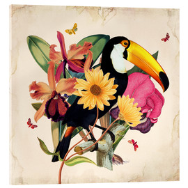 Metacrilato  Oh My Parrot XII - Mandy Reinmuth