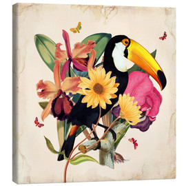 Lienzo  Oh My Parrot XII - Mandy Reinmuth