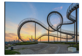 Cuadro de aluminio  Tiger and Turtle Duisburg - Michael Valjak