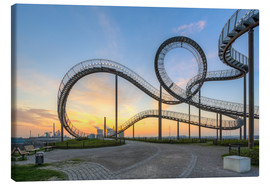 Lienzo  Tiger and Turtle Duisburg - Michael Valjak