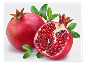 Póster pomegranate