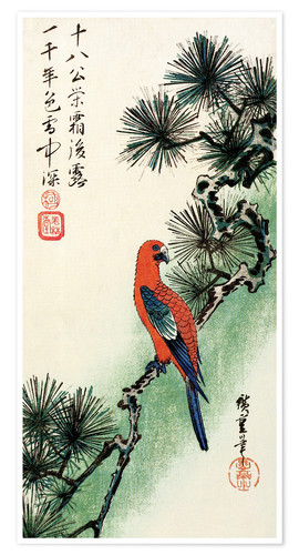 Póster Pine and parakeet
