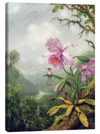 Lienzo  Hummingbird Perched on an Orchid Plant - Martin Johnson Heade