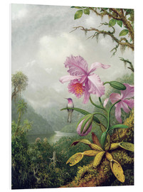 Forex  Hummingbird Perched on an Orchid Plant - Martin Johnson Heade