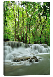 Lienzo  Waterfall in forest of Thailand