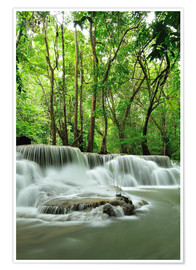 Póster  Waterfall in forest of Thailand