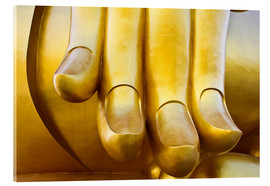 Metacrilato  Fingers of the Buddha