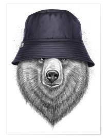 Póster Bear in hat
