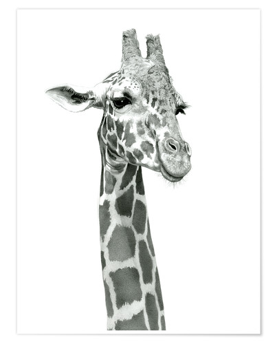 Póster Sketch Of A Smiling Giraffe
